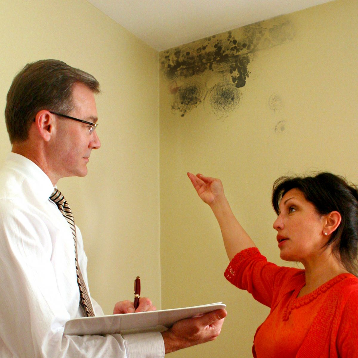 Mold Inspection Ottawa Ontario